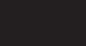 ROCHIE I.R 491TLI ARGINTIU 38 M